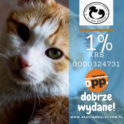 Twój 1% ma wielką moc !